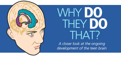 Why Do They Do That? A Closer Look at the Ongoing Development of the Teen Brain