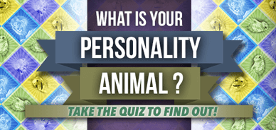 Personality Animal Profiles